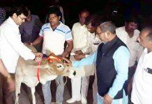 बीकानेर में रेडियम अभियान शुरू करते महापौर नारायण चौपड़ा, भाजपा नेता एस. एस. प्रजापत व अन्य।