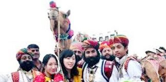 बीकानेर में आयोजित हो रहे अंतरराष्ट्रीय ऊंट उत्सव में रौबीलों के साथ सैलानी। Rajesh Changani